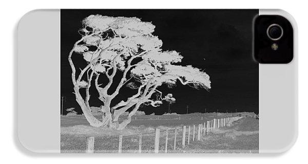 Lone Tree, West Coast IPhone 4s Case by Nareeta Martin