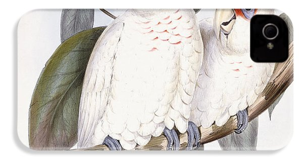 Long-billed Cockatoo IPhone 4s Case by John Gould