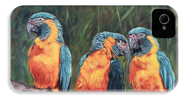 Macaws IPhone 4s Case by David Stribbling