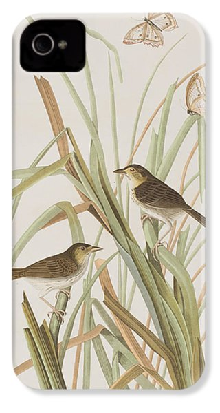 Macgillivray's Finch  IPhone 4s Case by John James Audubon