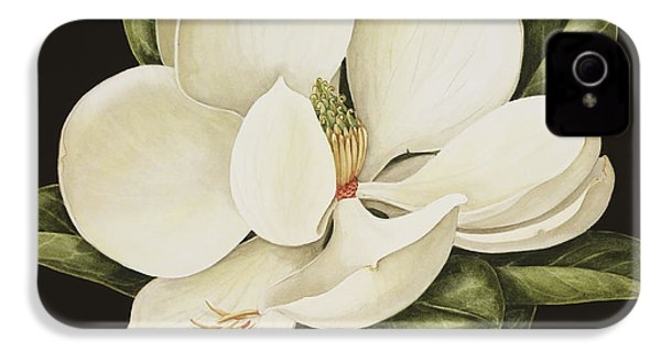 Magnolia Grandiflora IPhone 4s Case by Jenny Barron