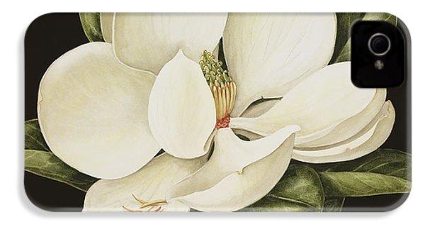Magnolia Grandiflora IPhone 4s Case