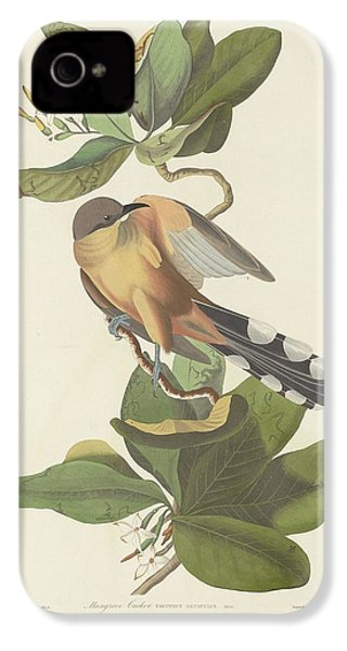 Mangrove Cuckoo IPhone 4s Case by Rob Dreyer