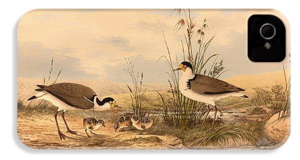 Masked Lapwing IPhone 4s Case by Mountain Dreams