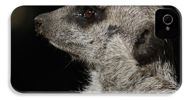 Meerkat Profile IPhone 4s Case by Ernie Echols