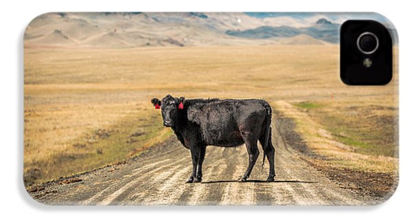 Middle Of The Road IPhone 4s Case by Todd Klassy