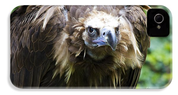 Monk Vulture 3 IPhone 4s Case by Heiko Koehrer-Wagner