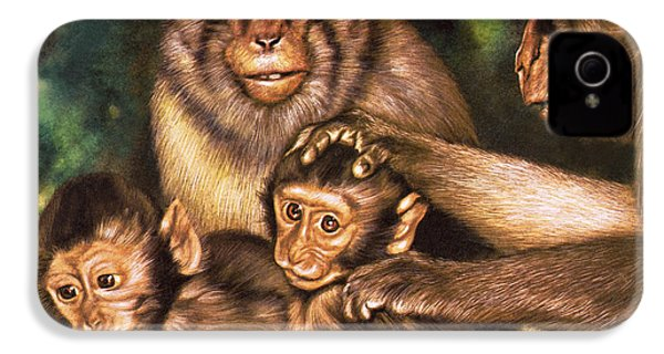 Monkey Family IPhone 4s Case