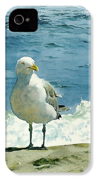 Montauk Gull IPhone 4s Case