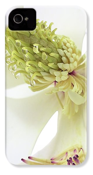 IPhone 4s Case featuring the photograph Morning Dew On The Magnolia by JC Findley