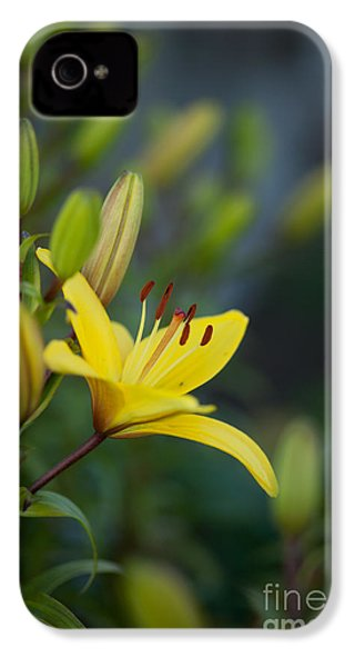 Morning Lily IPhone 4s Case by Mike Reid