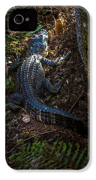 Mr Alley Gator IPhone 4s Case