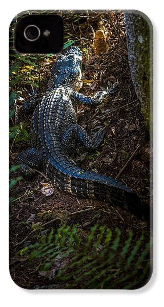 Mr Alley Gator IPhone 4s Case by Marvin Spates