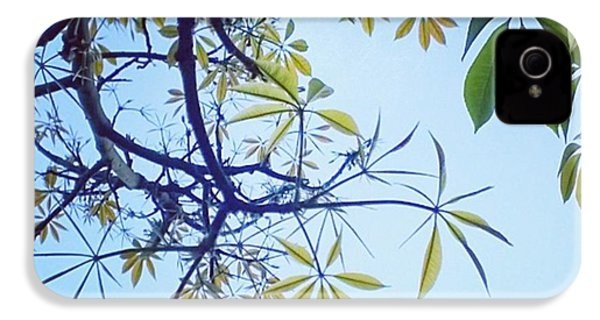 New #spring Leaves On My Tree In The IPhone 4s Case by Shari Warren