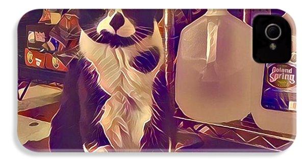 Nyc Bodega Cat IPhone 4s Case