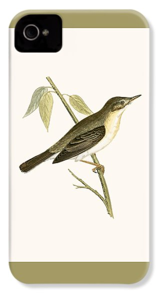 Olivaceous Warbler IPhone 4s Case by English School