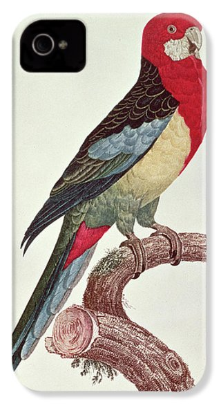Omnicolored Parakeet IPhone 4s Case by Jacques Barraband