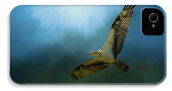 Osprey In The Evening Light IPhone 4s Case by Jai Johnson