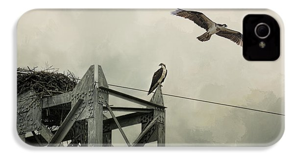 Ospreys At Pickwick IPhone 4s Case