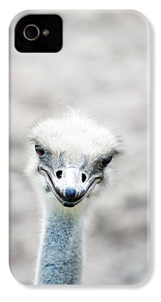 Ostrich IPhone 4s Case by Lauren Mancke
