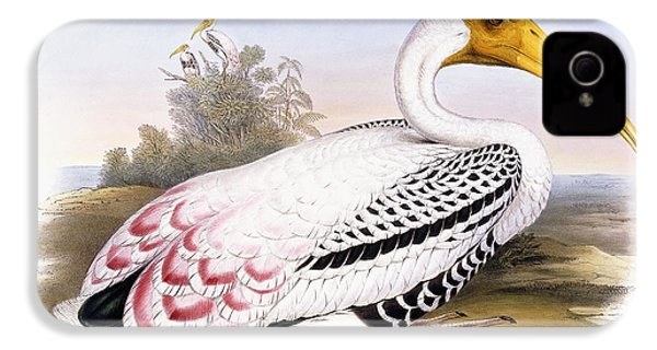 Painted Stork IPhone 4s Case by John Gould