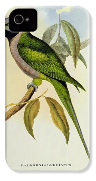 Parakeet IPhone 4s Case by John Gould