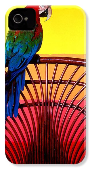 Parrot Sitting On Chair IPhone 4s Case by Garry Gay