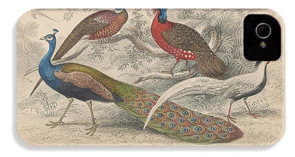 Peacocks IPhone 4s Case