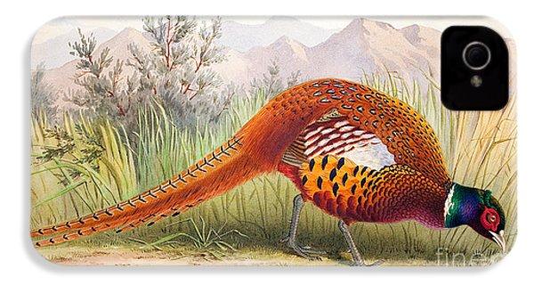Pheasant IPhone 4s Case