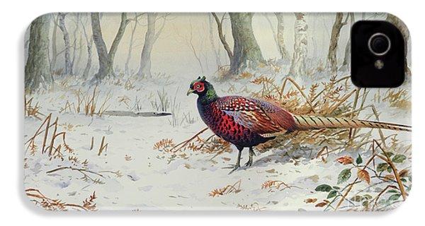Pheasants In Snow IPhone 4s Case
