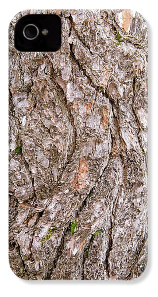 Pine Bark Abstract IPhone 4s Case by Christina Rollo
