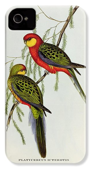 Platycercus Icterotis IPhone 4s Case by John Gould