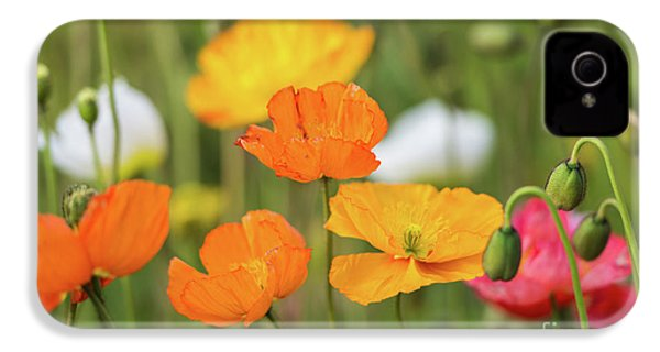 IPhone 4s Case featuring the photograph  Poppies 1 by Werner Padarin