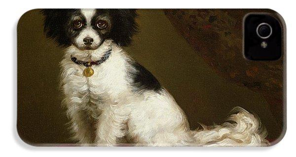 Portrait Of A Spaniel IPhone 4s Case