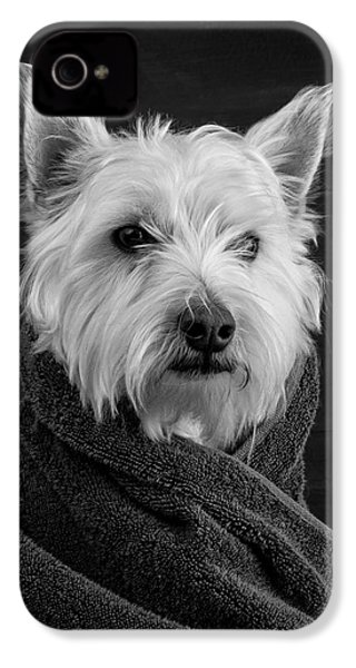 Portrait Of A Westie Dog IPhone 4s Case by Edward Fielding