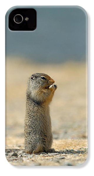 Prairie Dog IPhone 4s Case by Sebastian Musial