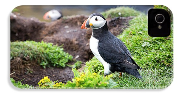 Puffin  IPhone 4s Case