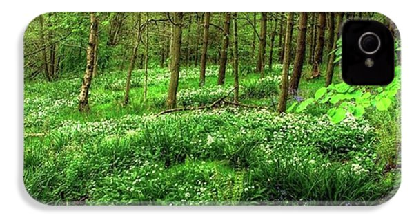 Ramsons And Bluebells, Bentley Woods IPhone 4s Case by John Edwards