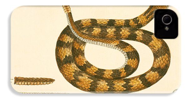 Rattlesnake IPhone 4s Case by Mark Catesby