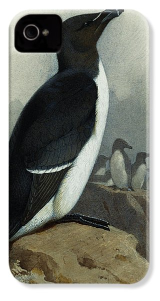 Razorbill IPhone 4s Case by Archibald Thorburn