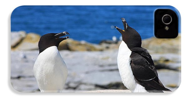 Razorbills Calling On Island IPhone 4s Case by John Burk