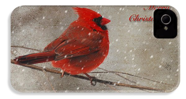 Red Bird In Snow Christmas Card IPhone 4s Case by Lois Bryan