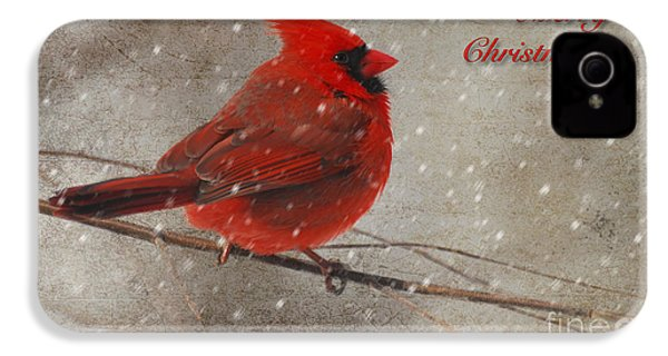 Red Bird In Snow Christmas Card IPhone 4s Case