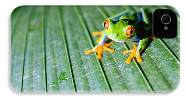 Red Eyed Frog Close Up IPhone 4s Case by Matteo Colombo