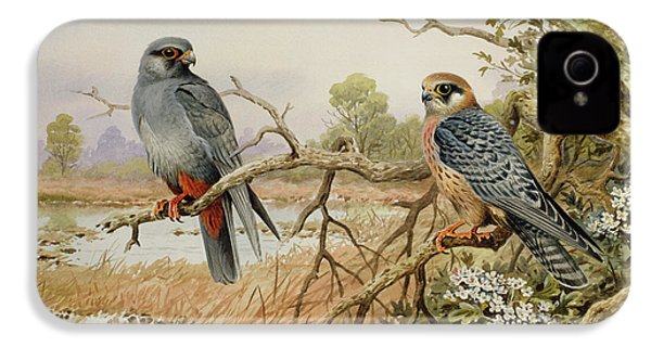 Red-footed Falcons IPhone 4s Case by Carl Donner