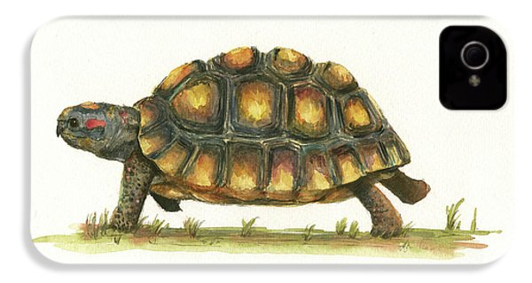 Red Footed Tortoise  IPhone 4s Case by Juan Bosco