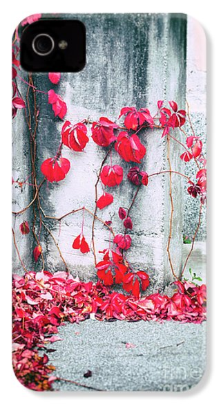 IPhone 4s Case featuring the photograph Red Ivy Leaves by Silvia Ganora