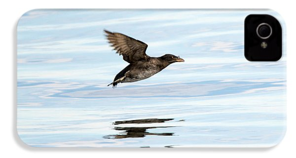 Rhinoceros Auklet Reflection IPhone 4s Case by Mike Dawson
