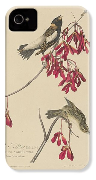 Rice Bunting IPhone 4s Case by Rob Dreyer