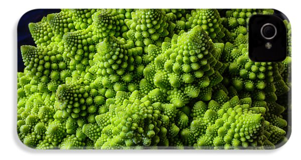 Romanesco Broccoli IPhone 4s Case by Garry Gay